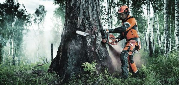 Personal Protection Equipment Using Chainsaw - Best Home Gear