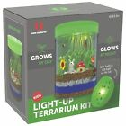 Light Up Terrarium Kit for Kids With LED Light On Lid Create Your Own Customize