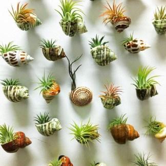 Diy Indoor Plant Display Ideas04