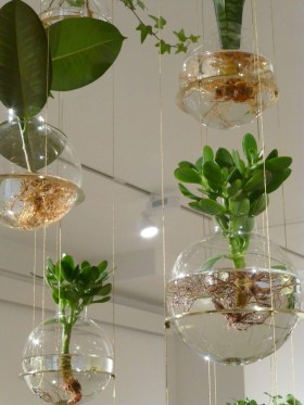 Diy Indoor Plant Display Ideas10
