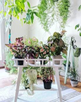 Diy Indoor Plant Display Ideas13