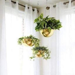 Diy Indoor Plant Display Ideas14