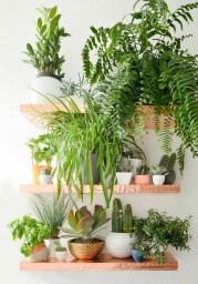 Diy Indoor Plant Display Ideas18