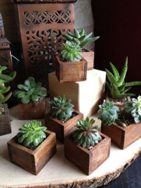 Diy Indoor Plant Display Ideas30
