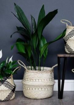 Diy Indoor Plant Display Ideas35