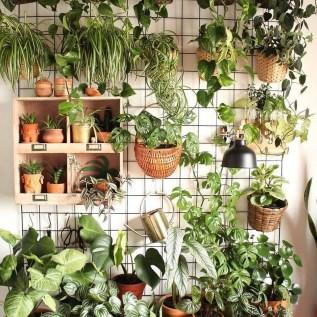 Diy Indoor Plant Display Ideas36
