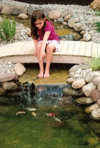 Fabulous Fish Pond Design Ideas For Your Home Yard20