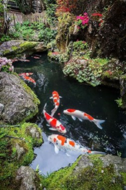 Fabulous Fish Pond Design Ideas For Your Home Yard25