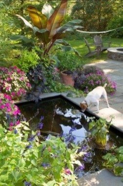 Fabulous Fish Pond Design Ideas For Your Home Yard26