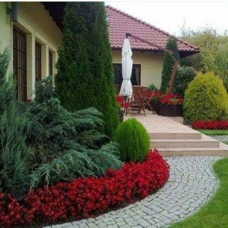 Astonishing Backyard Landscaping Ideas With Flower To Try18