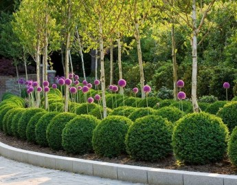 Astonishing Backyard Landscaping Ideas With Flower To Try20