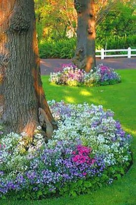 Astonishing Backyard Landscaping Ideas With Flower To Try36