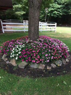 Creative Gardening Design Ideas On A Budget To Try38