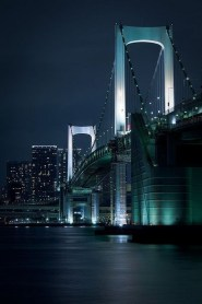 Extraordinary Bridges You Must Cross08