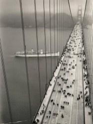Extraordinary Bridges You Must Cross41