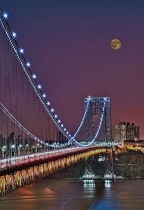 Extraordinary Bridges You Must Cross48