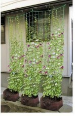 Fantastic Outdoor Vertical Garden Ideas For Small Space05