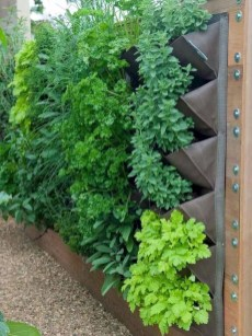 Fantastic Outdoor Vertical Garden Ideas For Small Space07