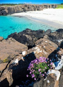Of The Most Attractive White Sand Beaches You Must See02