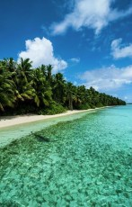 Of The Most Attractive White Sand Beaches You Must See19
