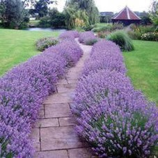 Outstanding Garden Design Ideas With Best Style To Try05