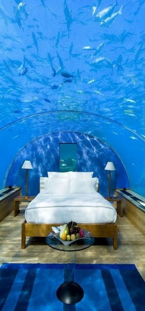 Photos That Will Make You Want To Visit The Maldives11