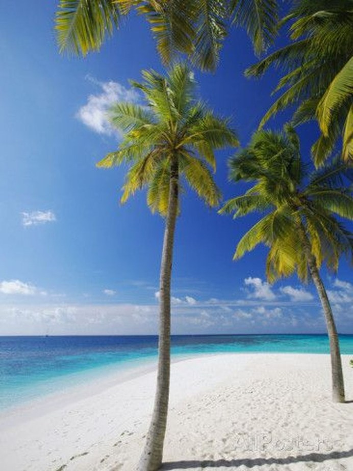 Photos That Will Make You Want To Visit The Maldives20