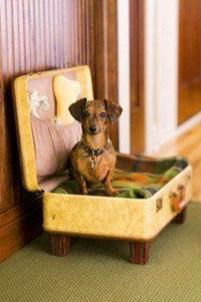 Diy Pet Bed Ideas44