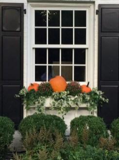 Helpful Tips For Autumn Update Of Your Garden12