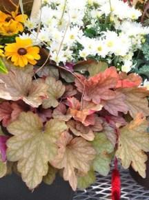Helpful Tips For Autumn Update Of Your Garden21