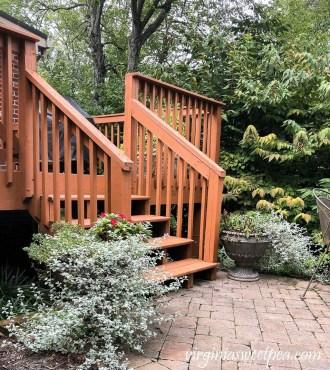Helpful Tips For Autumn Update Of Your Garden26