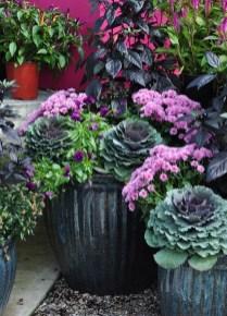 Helpful Tips For Autumn Update Of Your Garden28