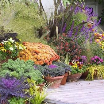 Helpful Tips For Autumn Update Of Your Garden34