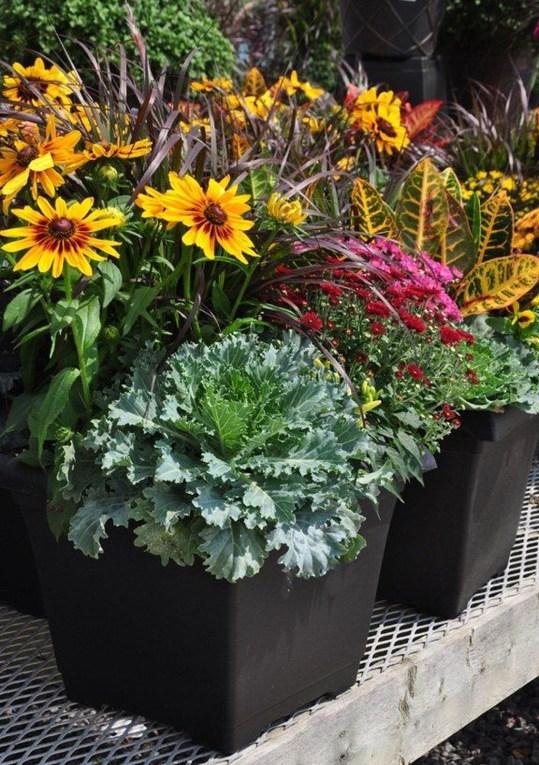 Helpful Tips For Autumn Update Of Your Garden40