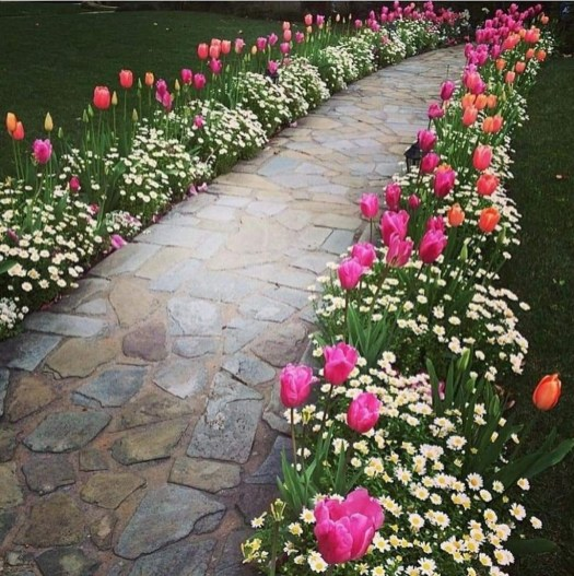 Beautiful Simple Front Yard Landscaping Design Ideas46