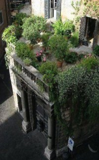 Most Popular And Beautiful Rooftop Garden20