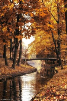 Soothing Autumn Landscape Ideas For This Season01
