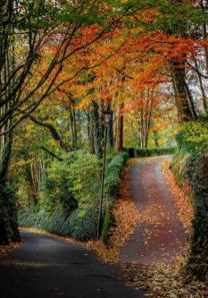 Soothing Autumn Landscape Ideas For This Season03