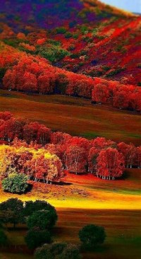 Soothing Autumn Landscape Ideas For This Season18