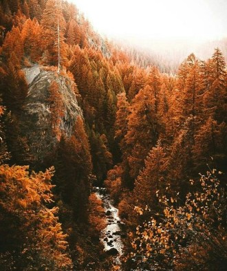 Soothing Autumn Landscape Ideas For This Season19