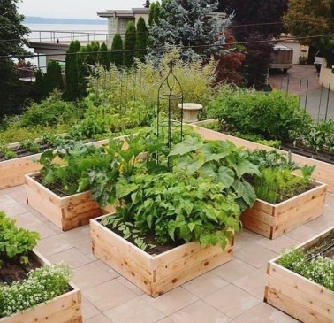 Awesome Rooftop Garden Ideas16
