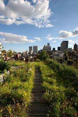 Awesome Rooftop Garden Ideas32