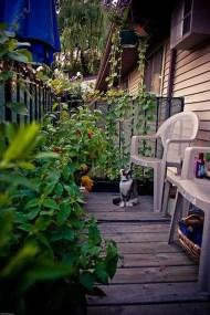 Cozy And Beautiful Green Balcony Ideas23