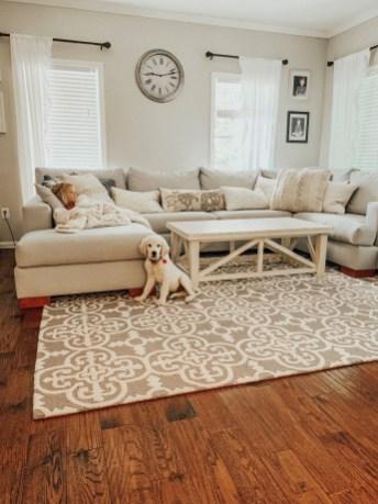 Magnifgicent Traditional Living Room Designs34
