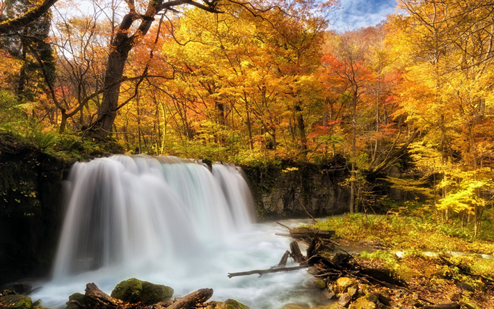 High Resolution Wallpaper Fall Leaves Download Wallpapers Waterfall Autumn Forest Yellow Trees