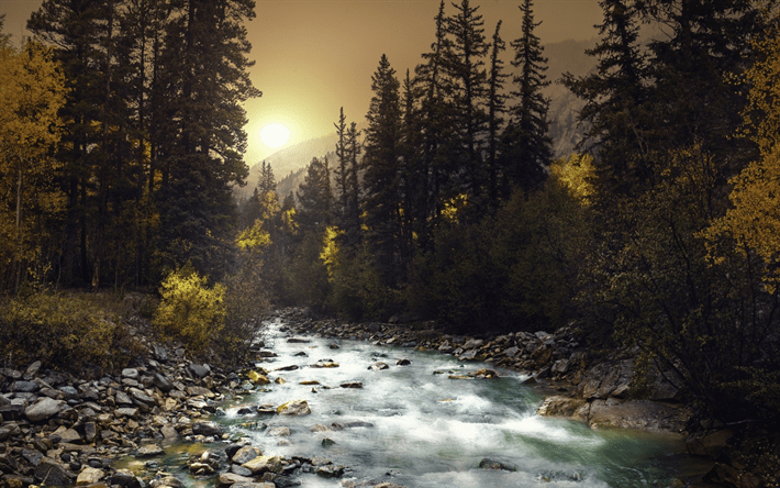 Hq 3d Wallpapers Free Download Download Wallpapers Mountain River Sunset Forest Green