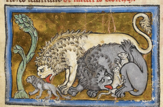 Image result for medieval manuscript lion fire