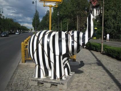 Elefants 4