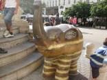 Elefants 8