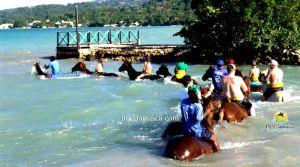 horse-back-jamaica-7